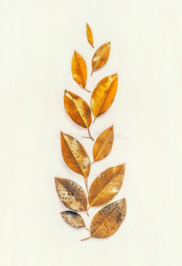 L'oro di autunno lascia comporre, la disposizione del piano, forma dell'orecchio fotografie stock