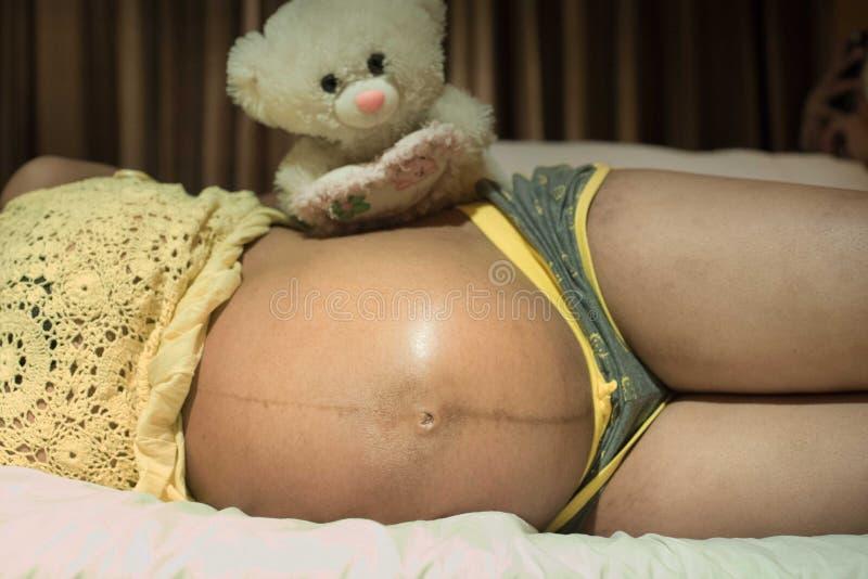l'orsacchiotto andando essere papà presto! fotografia stock libera da diritti