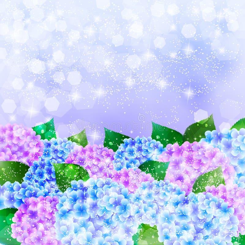 L'ortensia fiorisce il fondo di stagione delle pioggie illustrazione vettoriale