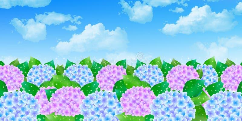 L'ortensia fiorisce la bandiera di stagione delle pioggie royalty illustrazione gratis