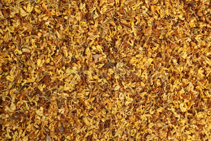 L'osmanto secco fiorisce il tè, per gli ambiti di provenienza o le strutture fotografia stock libera da diritti