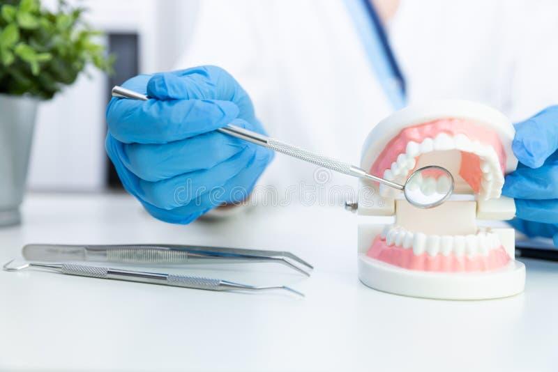 L'outil professionnel de stomatologie de participation femelle de dentiste et le pointage aux dents modèlent concept dentaire d'h images stock