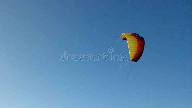 L'ozone Haka de cerf-volant de 7 mètres image stock