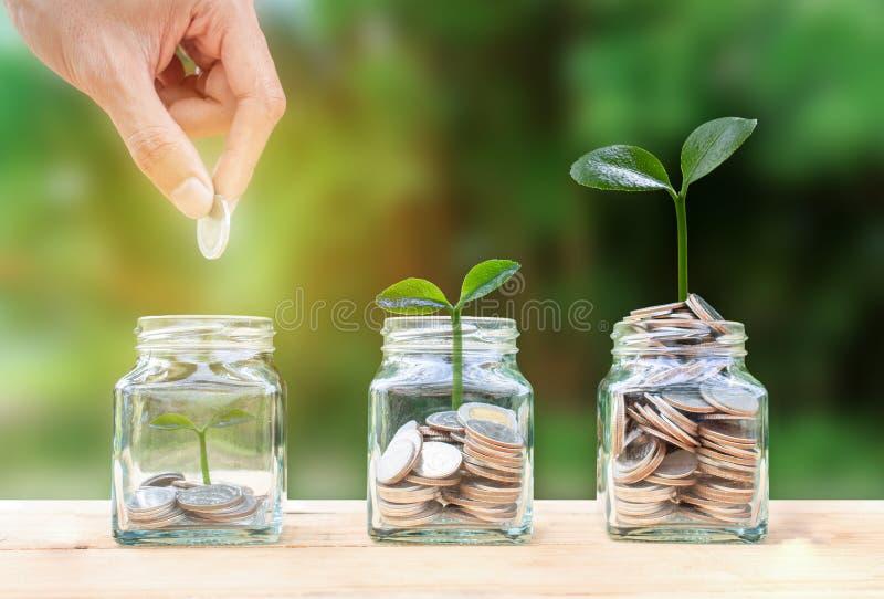 L'?pargne d'argent, investissement, gagnant l'argent pour l'avenir, concept financier de gestion de richesse Une pièce de monnaie photographie stock libre de droits