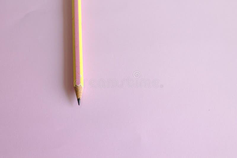 L?pis colocado em um fundo cor-de-rosa fotografia de stock