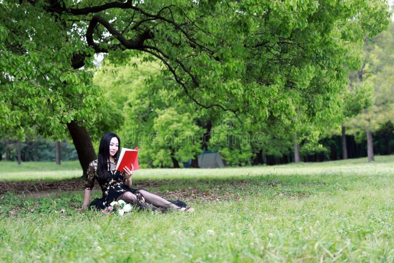 l?st sittande tree f?r blomning bok under fotografering för bildbyråer