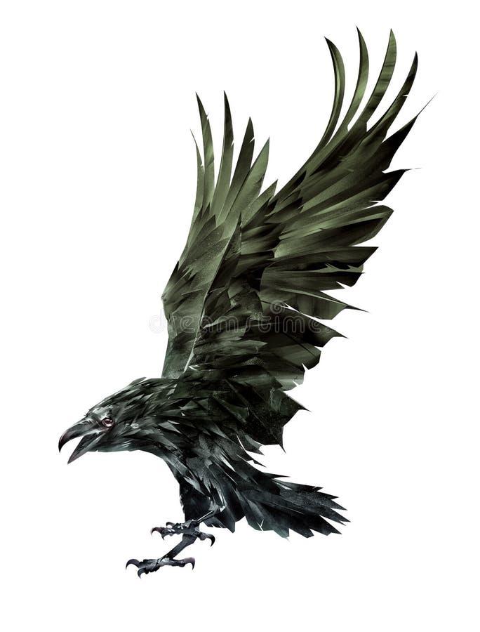 L'uccello del corvo isolato arte agita le sue ali immagine stock libera da diritti