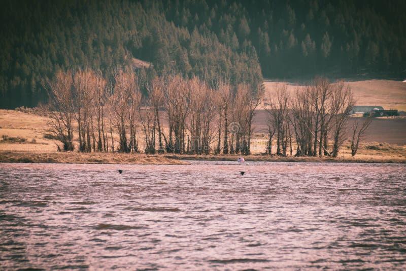 L'uccello profila sorvolare l'acqua turbolenta di un lago fotografia stock libera da diritti