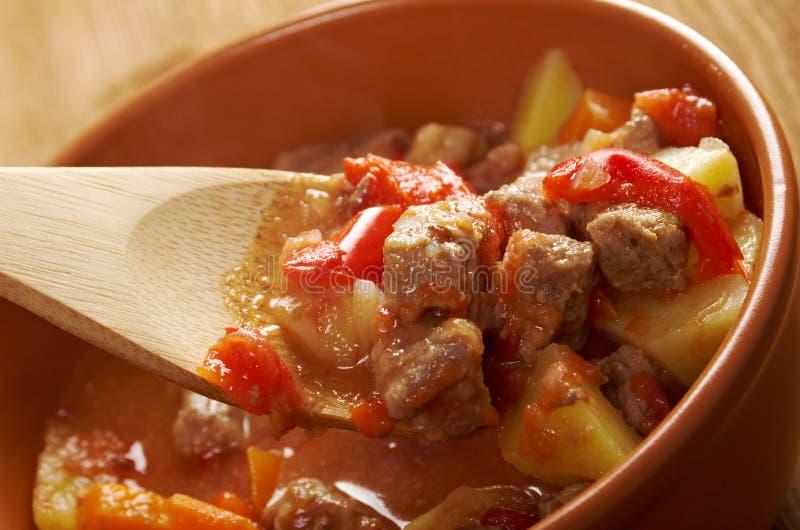 L ungersk varm gulaschsoppa royaltyfri bild