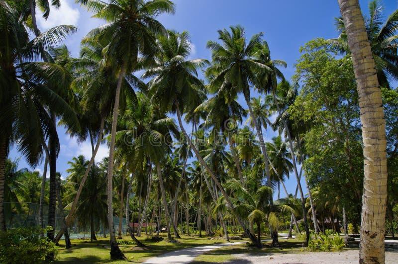 L'Union庄园,拉迪格岛,塞舌尔群岛海岛 免版税库存照片
