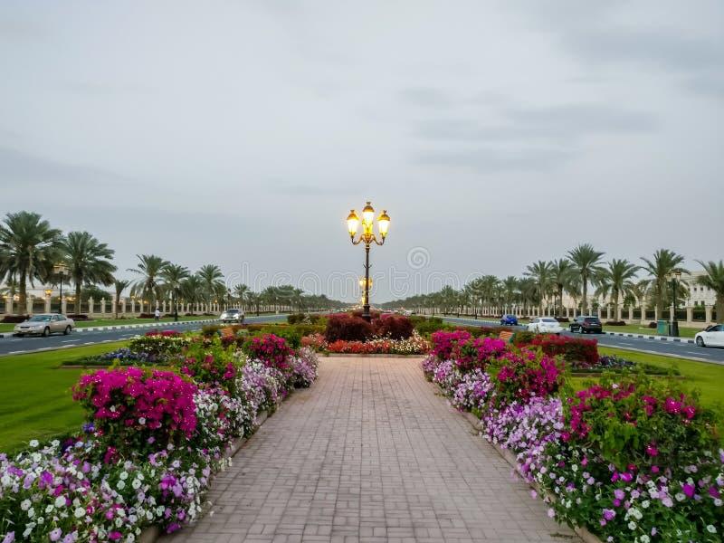 L'università di belle strade della città universitaria di Sharjah con le decorazioni della flora, UAE immagine stock