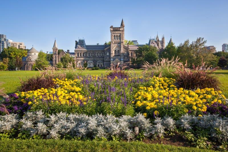 L'université de Toronto images libres de droits