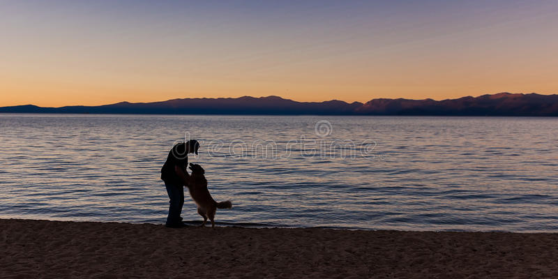 L'uomo accoglie il cane sulla spiaggia fotografia stock