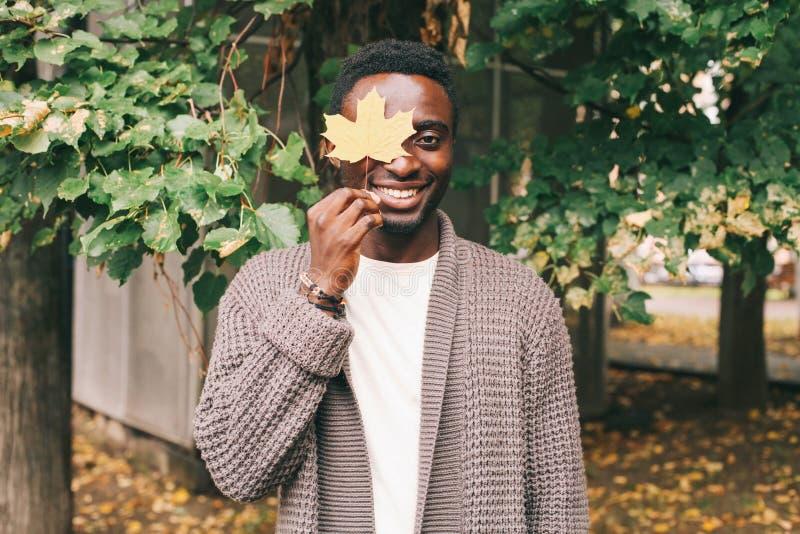 L'uomo africano sorridente felice tiene le foglie di acero gialle disponibile fotografia stock libera da diritti