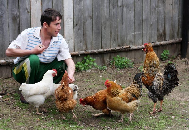 L'uomo alimenta le galline fotografie stock