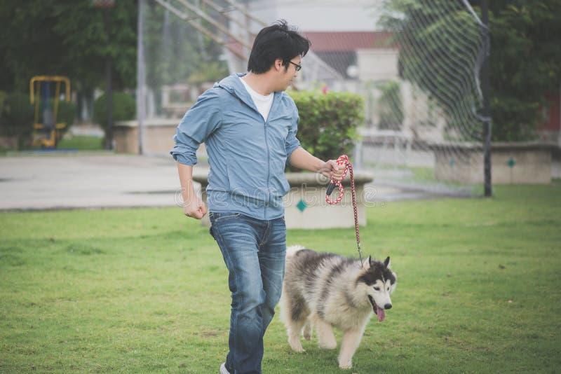 L'uomo asiatico che cammina con un husky siberiano indossa fotografia stock