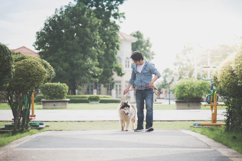 L'uomo asiatico che cammina con un husky siberiano indossa fotografia stock libera da diritti