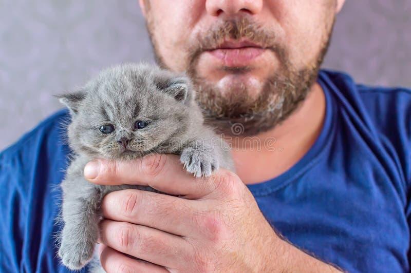 L'uomo barbuto abbraccia un piccolo gattino immagine stock