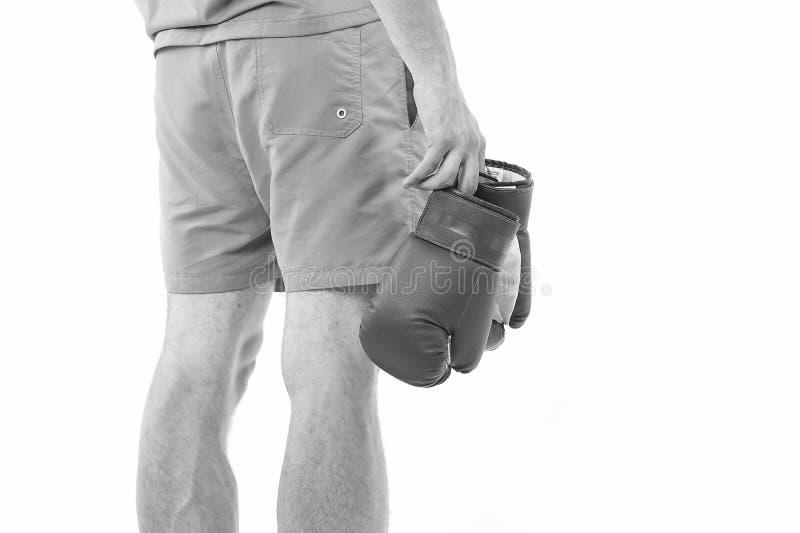 L'uomo in breve porta il fondo bianco isolato di retrovisione dei guantoni da pugile Sportivo del professionista dell'attrezzatur immagini stock