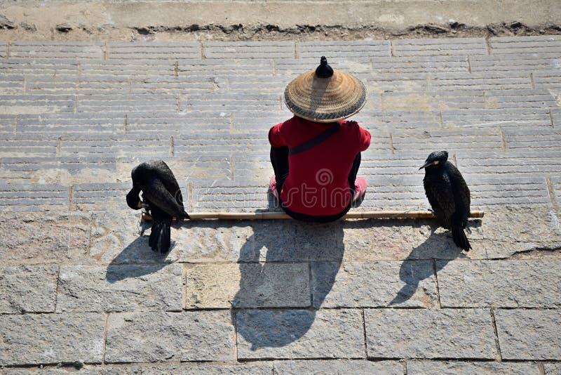 L'uomo con il cappello di paglia e due cormorani si siedono sulla banca del fiume immagine stock