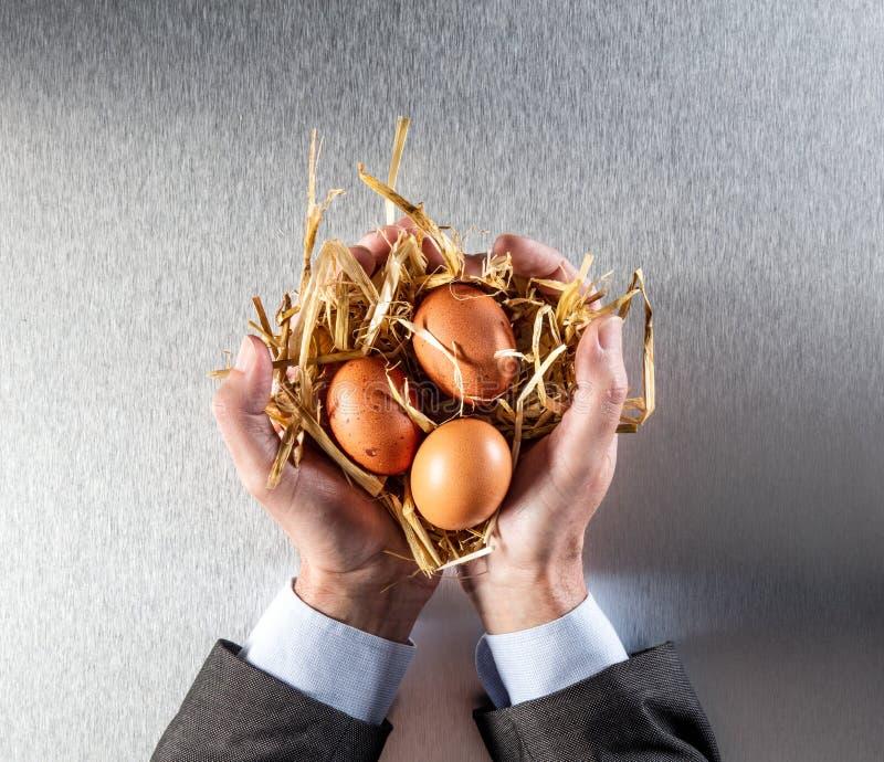 L'uomo d'affari passa la visualizzazione delle uova organiche per il concetto di conservazione di umanità fotografia stock libera da diritti