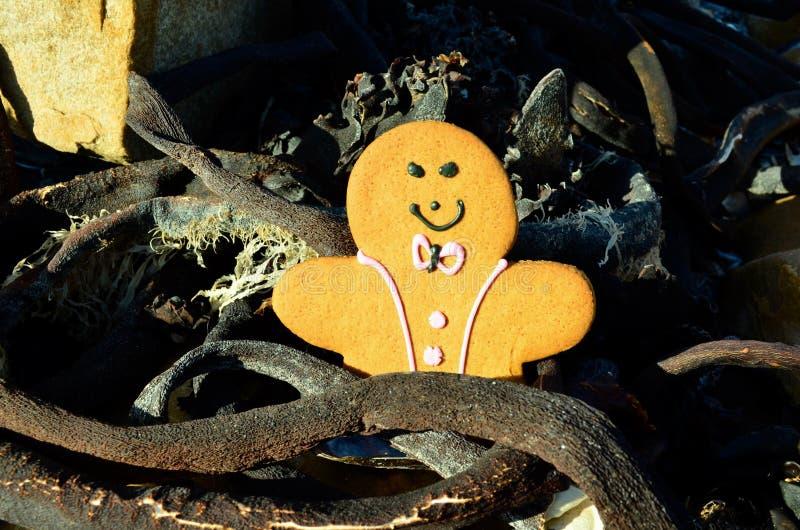 L'uomo di pan di zenzero in sole scuro asciutto ha acceso il fuco sulla spiaggia fotografia stock libera da diritti