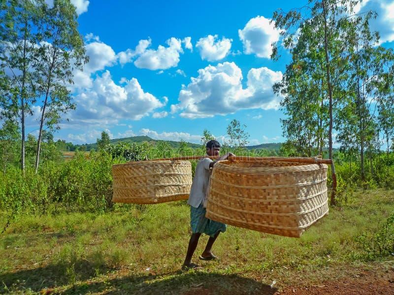 L'uomo indiano porta un grande canestro di bambù fotografia stock libera da diritti
