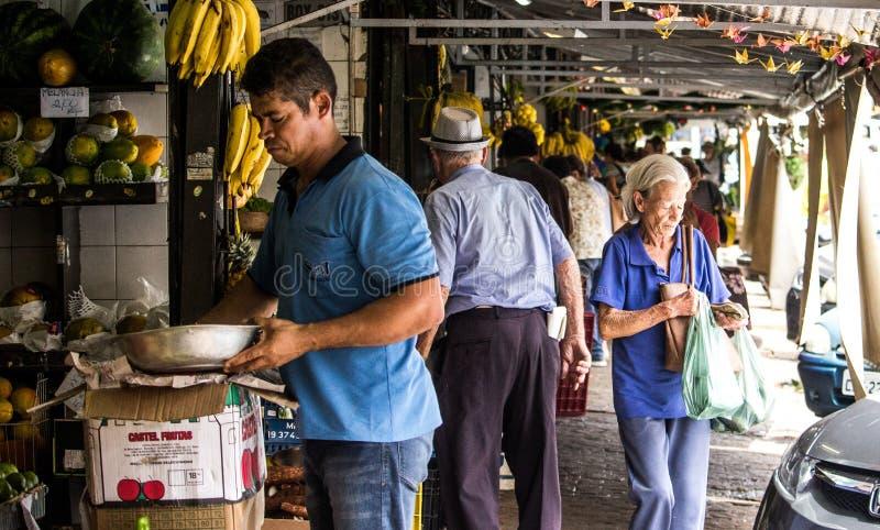 L'Uomo Indossa Una Camicetta Di Polo Blu Con Una Testa Di Metallo Grigio Vicino Ai Frutta Assorti fotografie stock libere da diritti