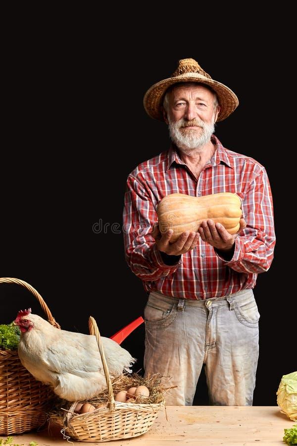 L'uomo maturo del villaggio, mostrante appena ha preso la zucca fresca dalla sua serra fotografia stock libera da diritti