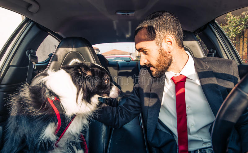 L'uomo motiva il suo cane prima di concorrenza canina fotografia stock libera da diritti