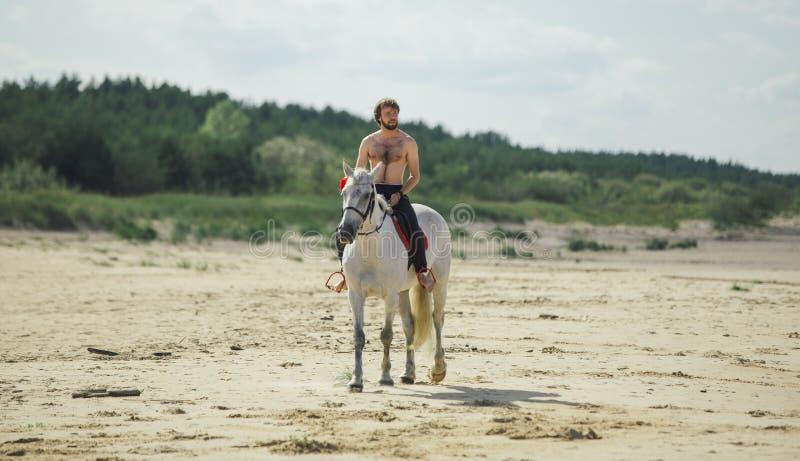 L'uomo nacked sul cavallo bianco sulla spiaggia fotografia stock libera da diritti