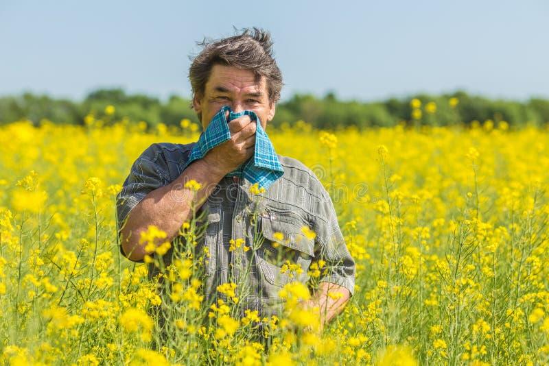 L'uomo nel campo soffre dalle allergie immagini stock libere da diritti