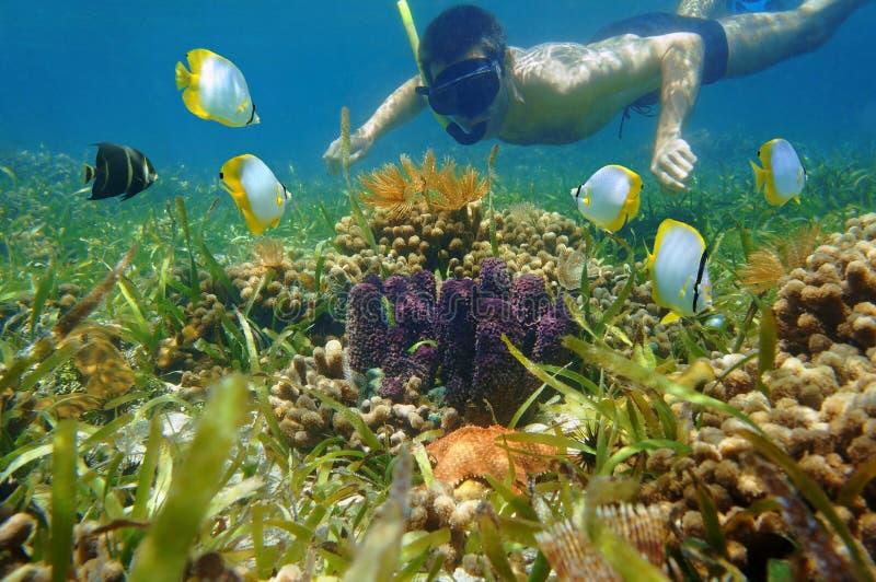 L'uomo nel underwater della presa d'aria sembra la vita di mare variopinta immagine stock libera da diritti