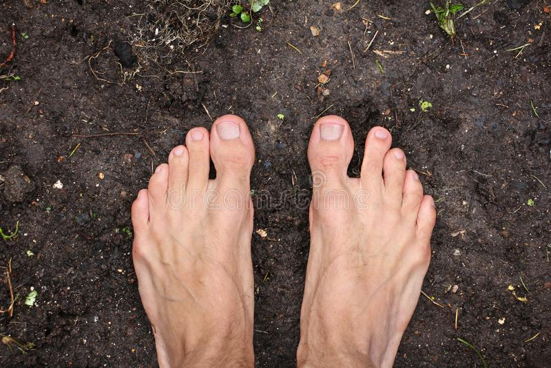 L'uomo scalzo sta sulla terra nera vuota del suolo in primavera, concetto di povertà, la vista superiore, primo piano fotografia stock libera da diritti