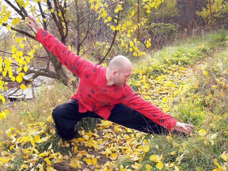L'uomo si esercita nel 'chi' del tai immagini stock libere da diritti