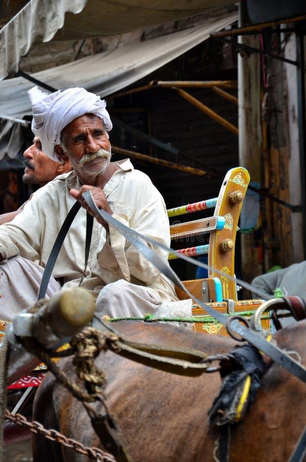 L'uomo sorridente guida il trasporto del cavallo a Lahore Pakistan immagine stock libera da diritti