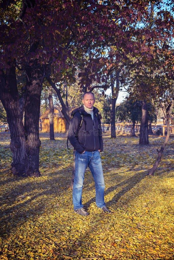 L'uomo sta in un parco, fra le foglie cadenti variopinte fotografie stock