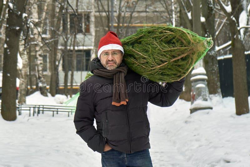 L'uomo in un cappello rosso di Santa continua la sua spalla un albero di Natale imballato in una griglia comprato appena al merca immagine stock