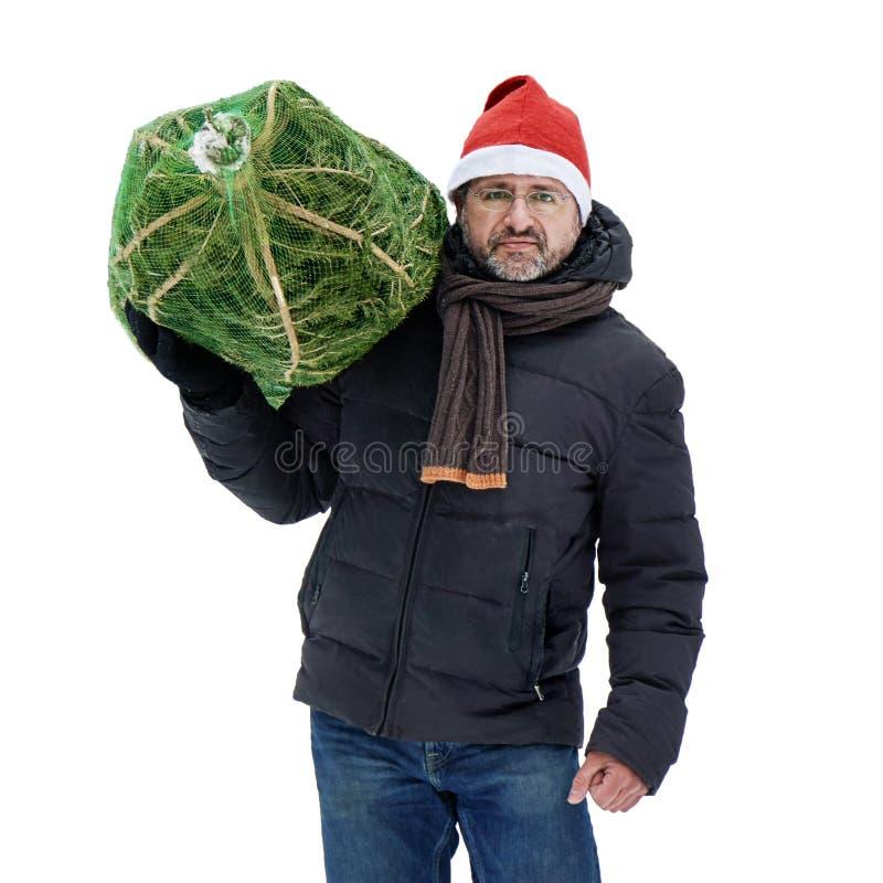 L'uomo in un cappello rosso di Santa porta un albero di Natale imballato in una griglia comprato appena al mercato di Natale isol fotografia stock
