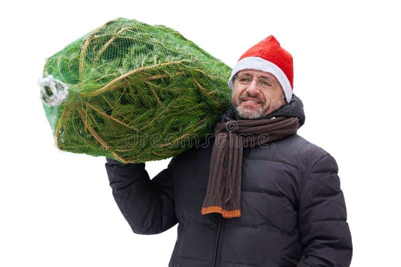 L'uomo in un cappello rosso di Santa porta un albero di Natale imballato in una griglia isolato su bianco fotografia stock libera da diritti