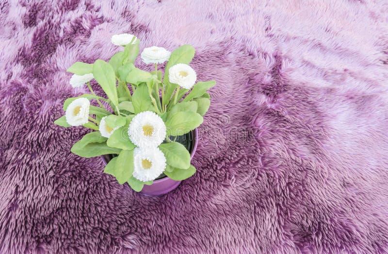 L'usine artificielle de plan rapproché avec la fleur blanche sur le pot pourpre sur le tapis pourpre a donné au fond une consista images libres de droits