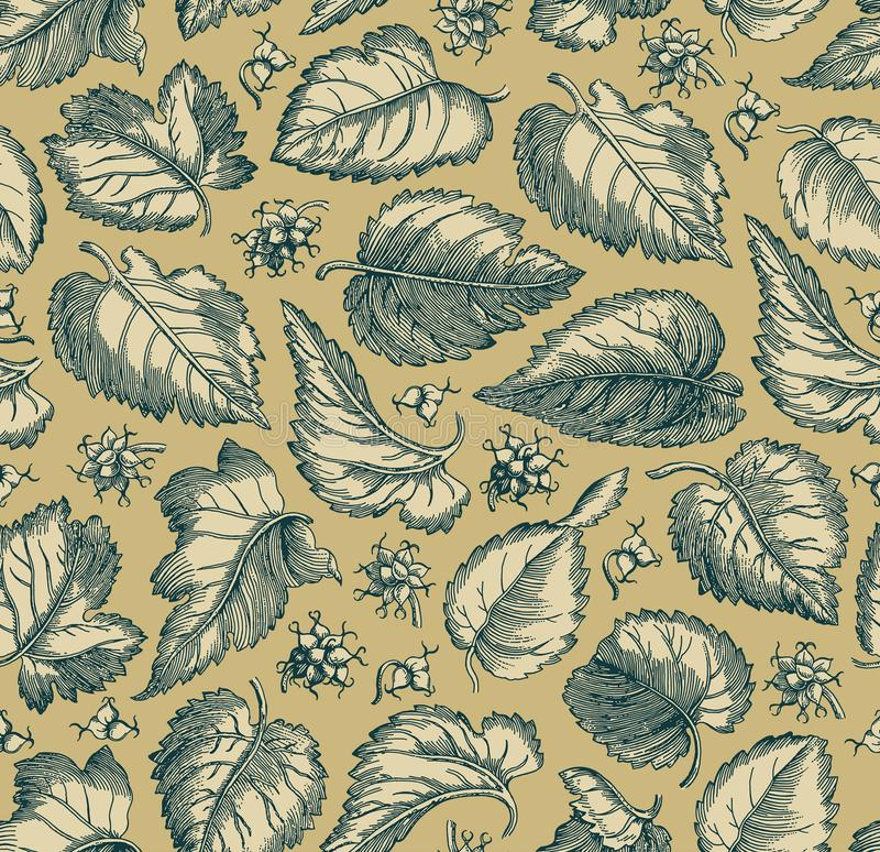 L'uva d'annata floreale isolata realistica del fondo del tessuto del modello senza cuciture lascia la carta da parati che disegna immagini stock libere da diritti