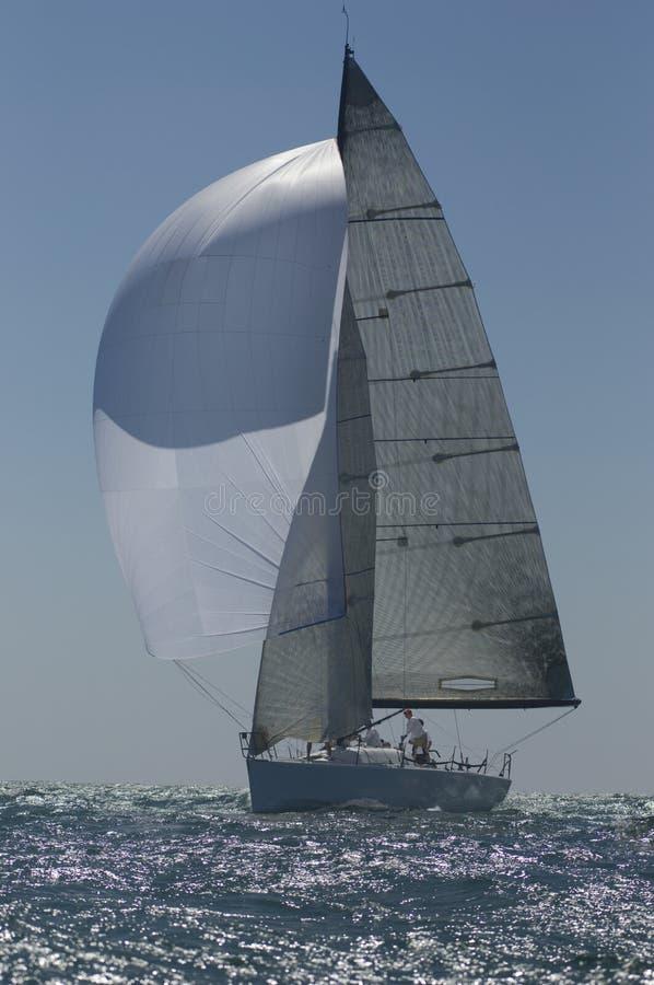 L'yacht fa concorrenza in Team Sailing Event fotografia stock libera da diritti
