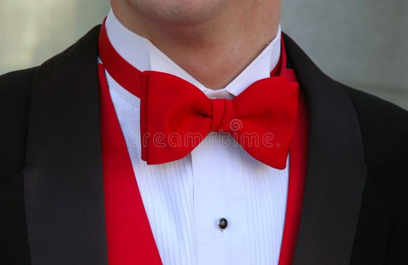 Laço de curva vermelho fotografia de stock royalty free