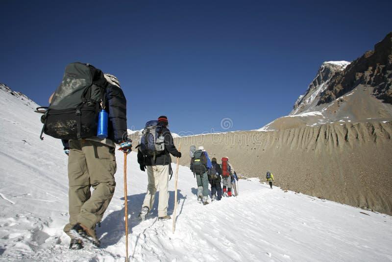 la对顶部迁徙的登山家thorong 库存图片