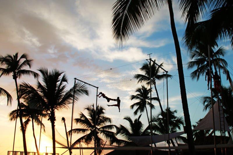 La acrobacia de la playa de la puesta del sol con Palmtree Sillouettes foto de archivo libre de regalías