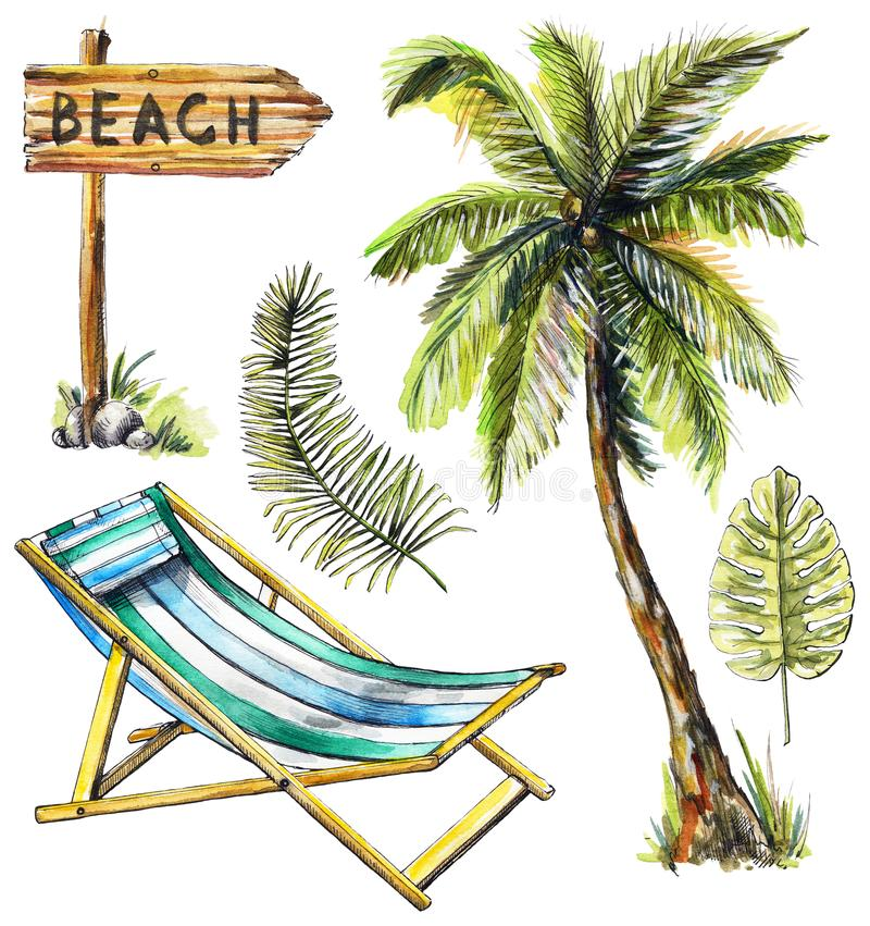 La acuarela fijó con el indicador, las ramas, la palmera y el beac de madera libre illustration