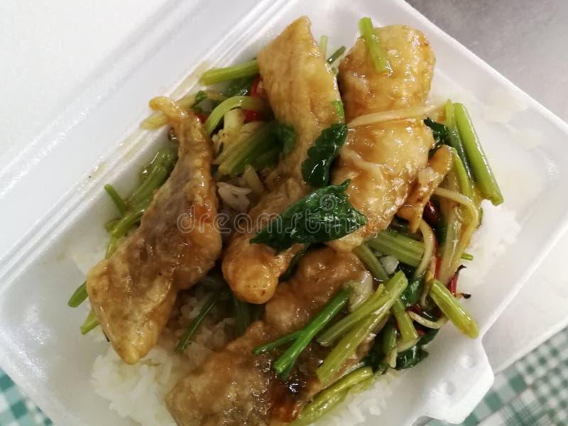 La agitación frita curruscante de los pescados con las hojas del apio sirvió con arroz foto de archivo libre de regalías