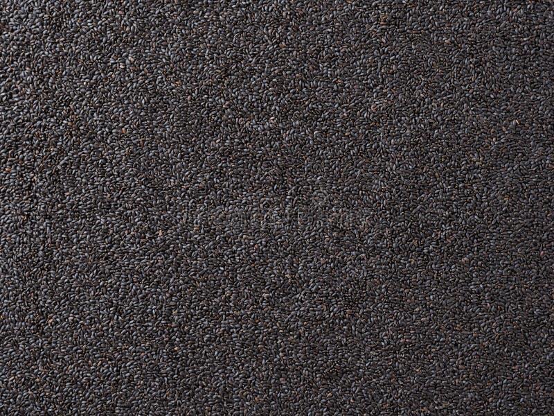 La albahaca dulce siembra el fondo, textura de las semillas de la albahaca imagenes de archivo