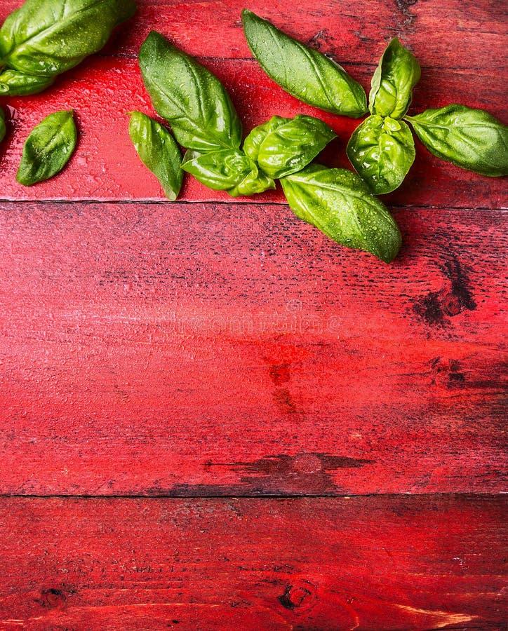 La albahaca fresca se va con descensos del agua en el fondo de madera rojo, vertical, visión superior imagen de archivo